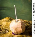 coconut water drink beside... | Shutterstock . vector #1017837076