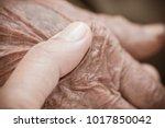 hands of asian woman holding...   Shutterstock . vector #1017850042
