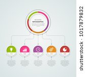 infographics template for...   Shutterstock .eps vector #1017879832