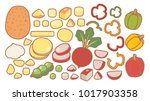 collection set of hand drawn... | Shutterstock .eps vector #1017903358