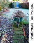 a frost covered british garden... | Shutterstock . vector #1017933082