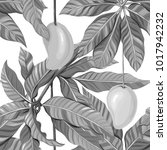 seamless pattern  background... | Shutterstock .eps vector #1017942232