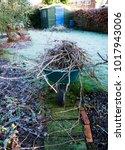 a frost covered british garden... | Shutterstock . vector #1017943006