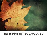 autumn leaves background | Shutterstock . vector #1017980716
