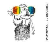 vector sketch of camel with...   Shutterstock .eps vector #1018008868