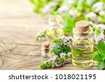 peppermint essential oil and... | Shutterstock . vector #1018021195