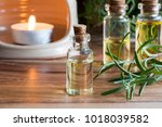 a bottle of rosemary essential...   Shutterstock . vector #1018039582