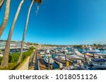 balboa island harbor in orange... | Shutterstock . vector #1018051126