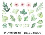 spring foliage. watercolor... | Shutterstock . vector #1018055008