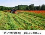 rich harvest  spring season ...   Shutterstock . vector #1018058632