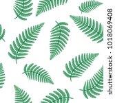 fern leafs seamless pattern | Shutterstock . vector #1018069408