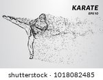 karate of particles. karate man ...   Shutterstock .eps vector #1018082485