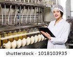 line of food production of... | Shutterstock . vector #1018103935
