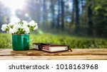 table background and spring... | Shutterstock . vector #1018163968