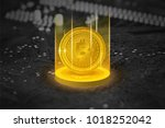golden bitcoin in shining light ... | Shutterstock . vector #1018252042