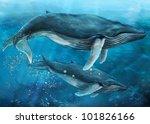 whale   Shutterstock . vector #101826166