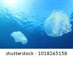 plastic ocean pollution | Shutterstock . vector #1018265158