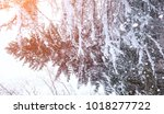winter landscape snow covered... | Shutterstock . vector #1018277722