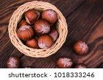 brown hazel nut. healthy... | Shutterstock . vector #1018333246