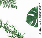 green tropical leaves on white... | Shutterstock . vector #1018351852
