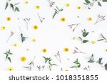 flowers composition. round... | Shutterstock . vector #1018351855