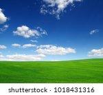 field of green grass and sky | Shutterstock . vector #1018431316