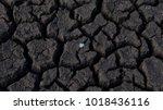 background of cracked  arid... | Shutterstock . vector #1018436116