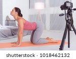 vigorous. fit energetic... | Shutterstock . vector #1018462132