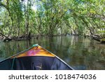 small boat sailing on mangroves ... | Shutterstock . vector #1018474036