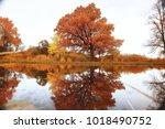 pond in an autumn park  ... | Shutterstock . vector #1018490752