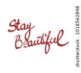 handwritten phrase stay... | Shutterstock . vector #1018562848