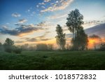spring morning. a misty dawn in ... | Shutterstock . vector #1018572832