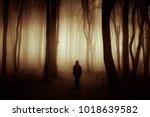 sunset light in dark mysterious ... | Shutterstock . vector #1018639582
