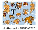 tiger set  isolated on white... | Shutterstock .eps vector #1018661902