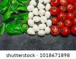 italian flag made of mozzarella ...   Shutterstock . vector #1018671898