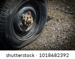 close up flat tire  old car on... | Shutterstock . vector #1018682392