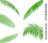 tropical green leaves. jungle... | Shutterstock .eps vector #1018683286