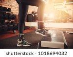 step platform. girl in sports... | Shutterstock . vector #1018694032