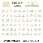 graphic set.icons in flat ... | Shutterstock . vector #1018700215
