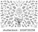 hand sketched floral design... | Shutterstock .eps vector #1018720258