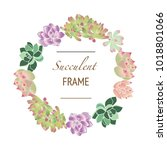 floral frame with succulent... | Shutterstock .eps vector #1018801066