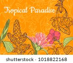 floral card template. hand... | Shutterstock .eps vector #1018822168