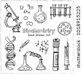 biochemistry. hand drawn doodle ... | Shutterstock .eps vector #1018915225