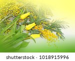 spring flowers yellow tulips... | Shutterstock . vector #1018915996