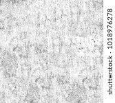 texture of dust  spots  lines ... | Shutterstock . vector #1018976278