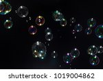 beautiful soap bubbles colorful ... | Shutterstock . vector #1019004862