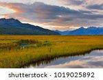 beautiful sunrise at potter... | Shutterstock . vector #1019025892