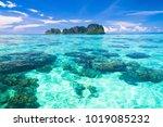 desert island sea scene  | Shutterstock . vector #1019085232