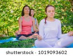 group people doing yoga in park....   Shutterstock . vector #1019093602