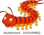 cartoon centipede isolated on... | Shutterstock .eps vector #1019109802